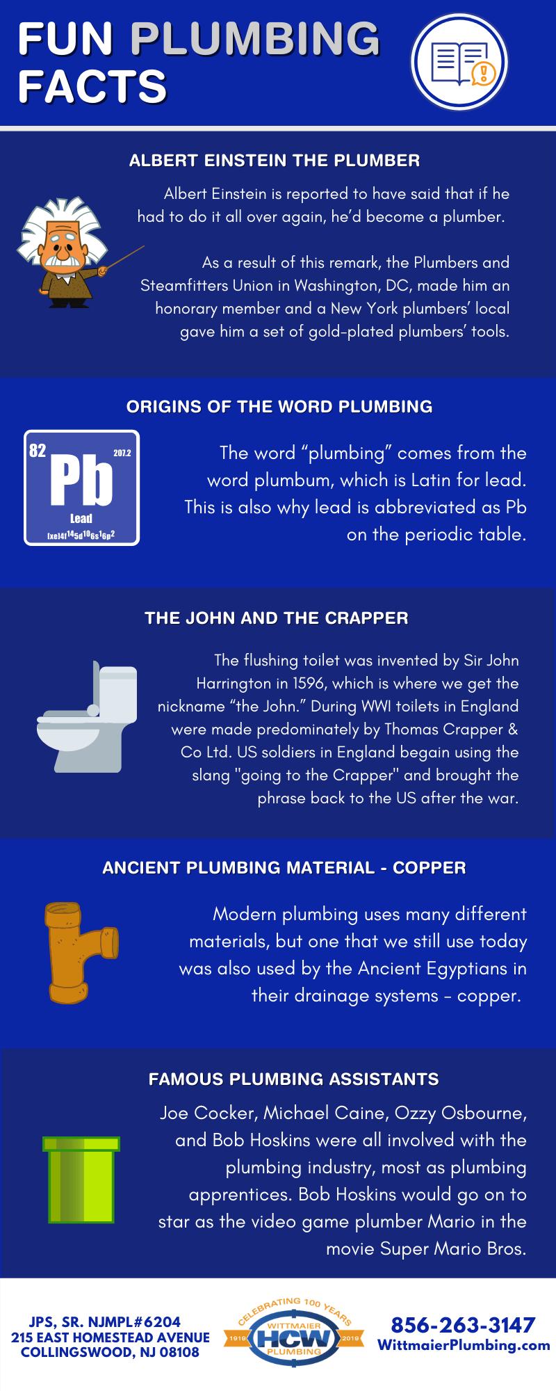 Fun Plumbing Facts Infographics